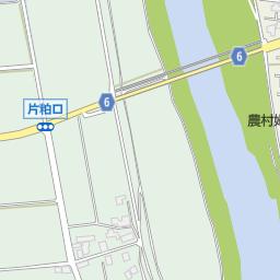 福井市社西小学校