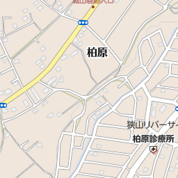 城山砦跡入口 狭山市 バス停 の地図 地図マピオン